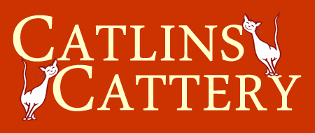 Catlins Cattery - Luxury Boarding in Essex